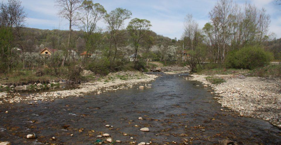 Întâlniri cu comunitățile locale din zona proiectului Fish for Life