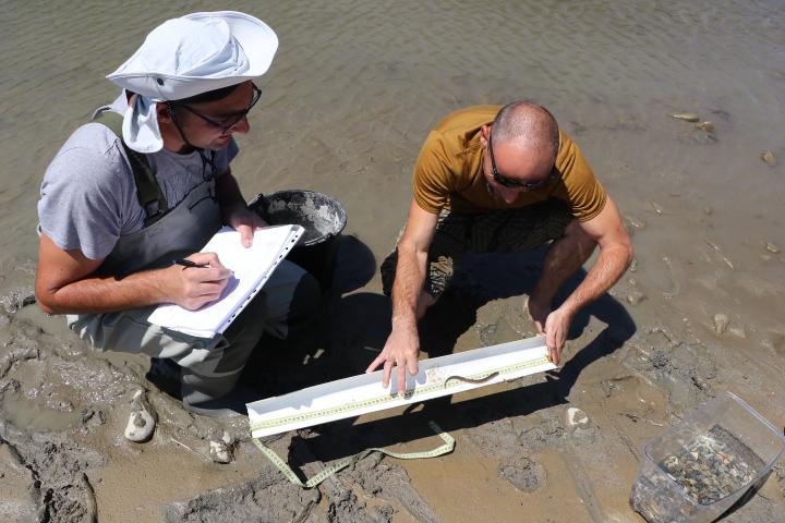Campanie de pescuit științific